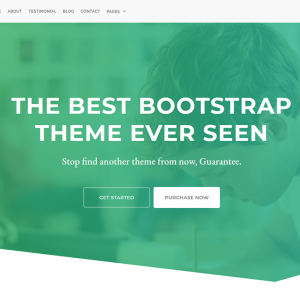 Orion - Landing Page Bootstrap Template