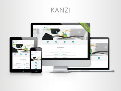 Kanzi - Multi-Purpose Template